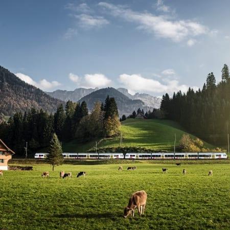 RegioExpress Kambly Train