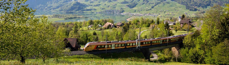 Voralpen-Express passing by Steinerberg